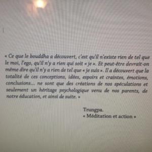 """Citation de Trungpa, tirée de son livre """"Méditation et action"""""""