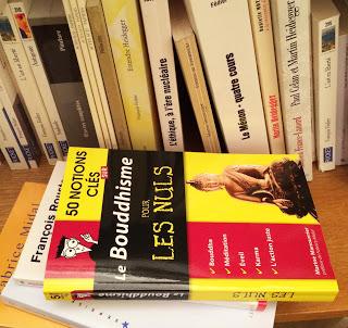 """Photo du livre de Marine Manouvrier """"50 notions clés sur le bouddhisme pour les nuls"""" posé à plat sur une étagère"""