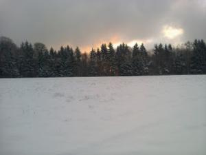 Photo d'une étendue de neige devant une forêt de sapin, sous un ciel nuageux d'où la lumière perce au centre juste au-dessus de la forêt