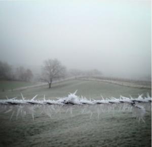 Photo d'un paysage brumeux où deux terrains sont séparés par une barrière de pics glacés