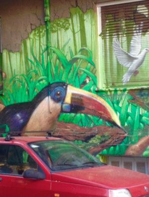 Photo de l'avant d'une voiture rouge sur fond d'un mur où est peint un toucan, de la végétation tropicale et une colombe s'envolant