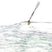 Photo d'un objet flottant seul dans une eau transparente, sur fond blanc