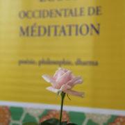 Photo d'une rose, posée devant un bannière jaune de l'École occidentale de méditation, fondée par Fabrice Midal