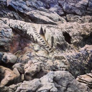 Photo d'un escalier dans la roche