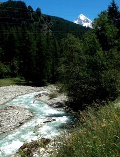 Photo d'une rivière de montagne