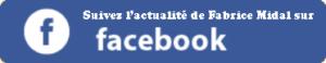 Icone Facebook de Fabrice Midal