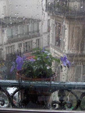 Photographie prise au travers d'une vitre de fenêtre sur laquelle ruisselle l'eau de pluie. Au premier plan, un pot de fleurs violettes est suspendu à un garde-corps . On aperçoit à l'arrière quelques immeubles.,