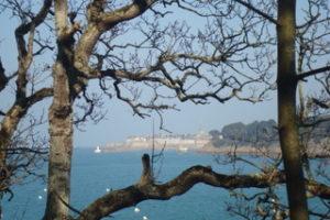 photographie d'un paysage de bord de mer vu au travers des branchages d'un arbre en hiver.