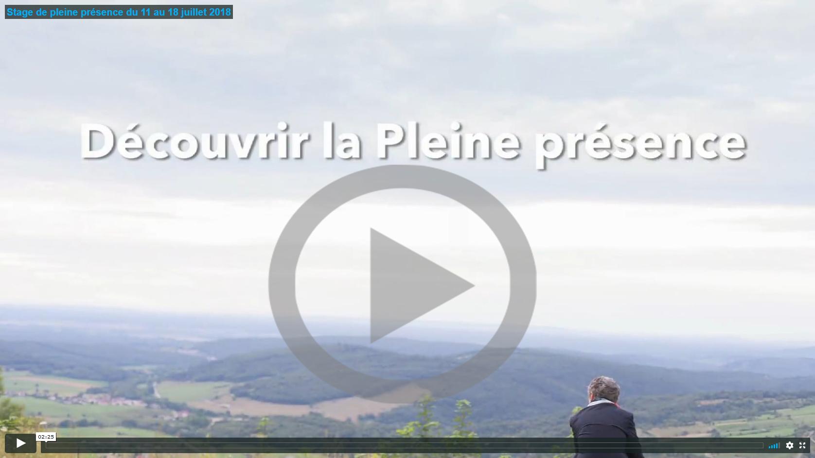 Image de la vidéo présentant le stage de Pleine présence de juillet 2018 organisé par l'École occidentale de méditation, fondée par Fabrice Midal