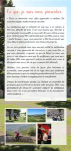 Présentation du séminaire d'été 2019 de Fabrice Midal - 1