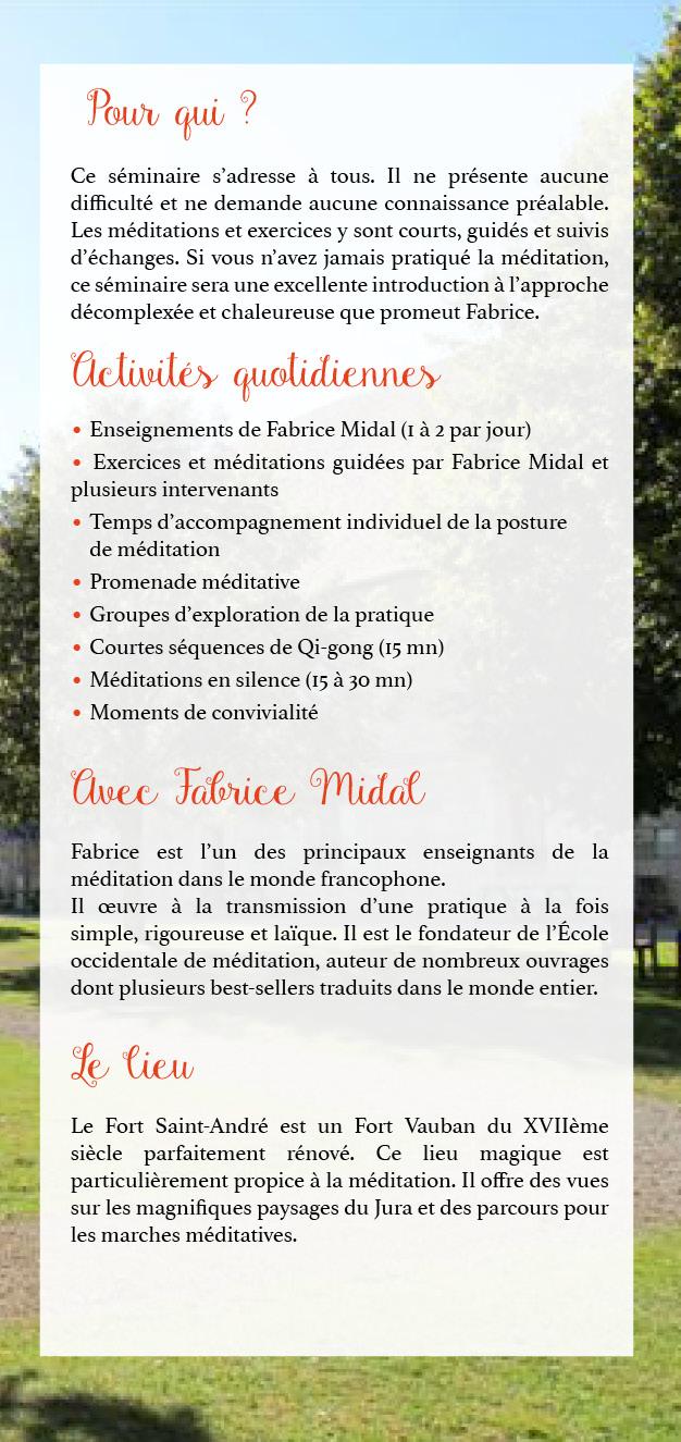 Présentation du séminaire d'été 2019 de Fabrice Midal - 2
