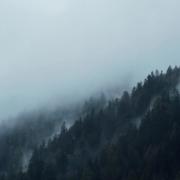 Photo d'un flan de montagne boisée sous une nappe de brume